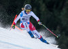Fabienne Suter of Switzerland competes during the ladies Downhill of Garmisch FIS Ski Alpine World Cup at the Kandahar course in Garmisch Partenkirchen, Germany on 2016/02/06.