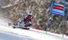 Stefan Luitz of Germany skiing in the first run of the men giant slalom race of Audi FIS Alpine skiing World cup in Kranjska Gora, Slovenia. Men giant slalom race of Audi FIS Alpine skiing World cup, was held in Kranjska Gora, Slovenia, on Friday, 4th of March 2016.