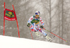 Alexis Pinturault of France skiing in the first run of the men giant slalom race of Audi FIS Alpine skiing World cup in Kranjska Gora, Slovenia. Men giant slalom race of Audi FIS Alpine skiing World cup, was held in Kranjska Gora, Slovenia, on Saturday, 5th of March 2016.