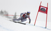 Alexis Pinturault of France skiing in the men super-g race of the Audi FIS Alpine skiing World cup in Val Gardena, Italy. Men super-g race of the Audi FIS Alpine skiing World cup, was held on Saslong course in Val Gardena Groeden, Italy, on Friday, 15th of December 2017.
