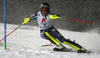 ]Anna Swenn Larsson of Sweden skiing in the first run of the women slalom race of the Audi FIS Alpine skiing World cup Flachau, Austria. Women slalom race of the Audi FIS Alpine skiing World cup season 2018-2019 was held Flachau, Austria, on Tuesday, 8th of January 2019.